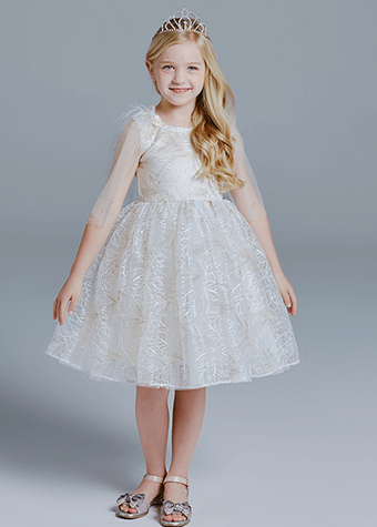 Princess Kids Party Wear Dress Puffy Girl Dresses