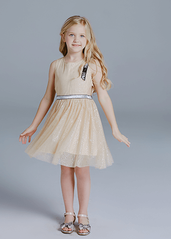 Girls clothing boutique baby girl party birthday dress children tulle dresses for birthday party