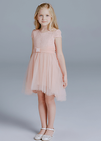 Little princess  party angel dress summer clothing